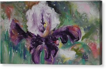Dear Iris Canvas Print