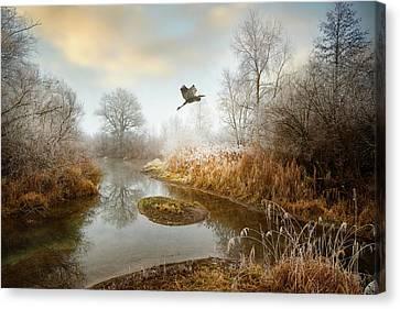 Dear World, Canvas Print by Philippe Sainte-Laudy