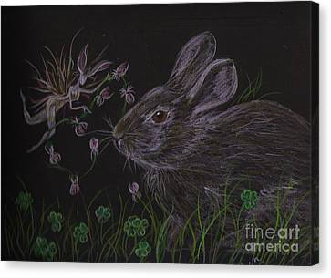 Canvas Print featuring the drawing Dearest Bunny Eat The Clover And Let The Garden Be by Dawn Fairies