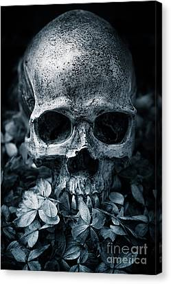 Canvas Print featuring the photograph Death Comes To Us All by Edward Fielding
