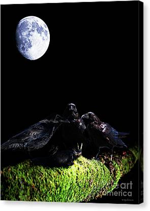 Death Of A Young Raven Canvas Print by Wingsdomain Art and Photography