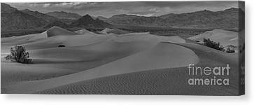 Death Valley Dunes Black And White Panorama Canvas Print by Adam Jewell