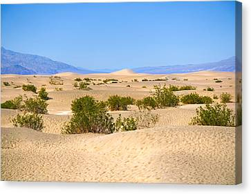 Death Valley Sanddunes Canvas Print by Lutz Baar