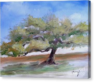 Deborah's Tree Canvas Print by Sally Simon