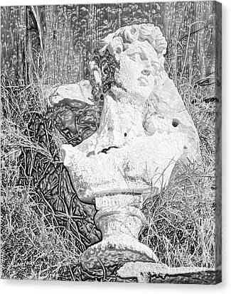 Statue Of David Canvas Print - Decay In The Hay by Joe Jake Pratt