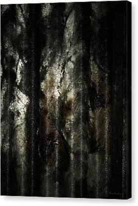 Frightening Canvas Print - Decay by Wim Lanclus