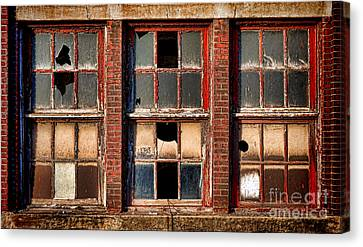 Decayed Canvas Print by Olivier Le Queinec