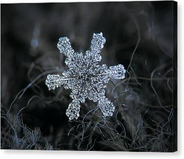 December 18 2015 - Snowflake 1 Canvas Print