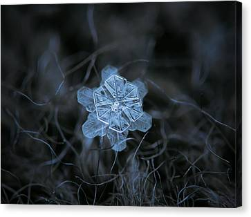 December 18 2015 - Snowflake 2 Canvas Print