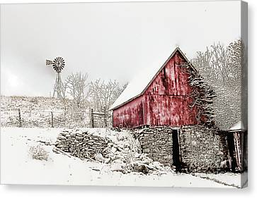 Decked In White Canvas Print by Nicki McManus