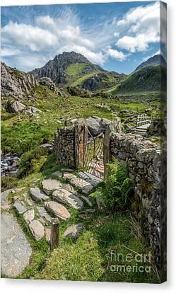 Decorative Iron Gate  Canvas Print by Adrian Evans