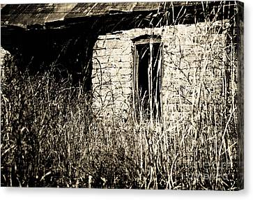 Decrepit With Window Canvas Print by Fred Lassmann