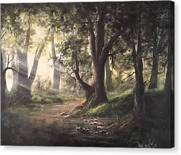 Deep Forest Rays  Canvas Print