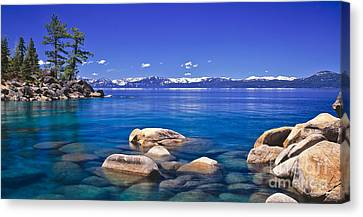 Deep Looks Panorama Canvas Print by Vance Fox