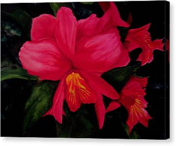 Deep Red Canvas Print by Susan Tilley