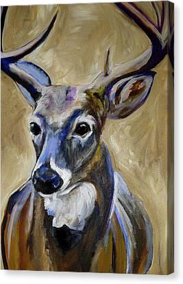 Deer  Canvas Print by Anne Seay