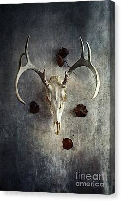 Canvas Print featuring the photograph Deer Buck Skull With Fallen Leaves by Stephanie Frey
