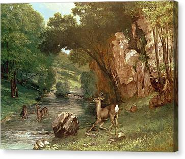 Riviere Canvas Print - Deer By A River by Gustave Courbet