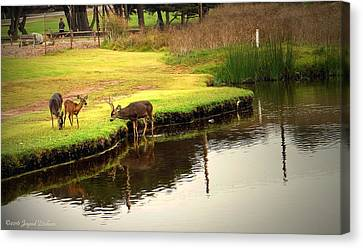 Deer Family Feeding Canvas Print