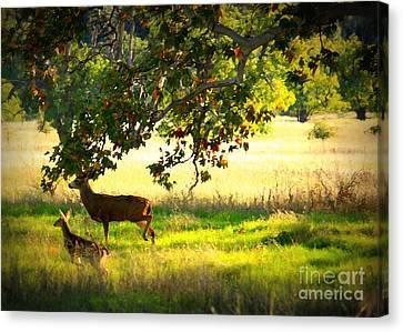 Deer In Autumn Meadow - Digital Painting Canvas Print by Carol Groenen