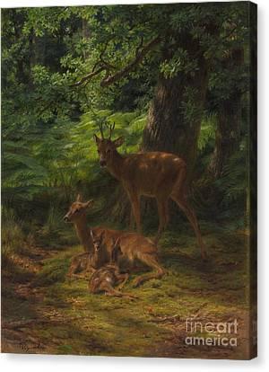 Deer In Repose Canvas Print by Rosa Bonheur