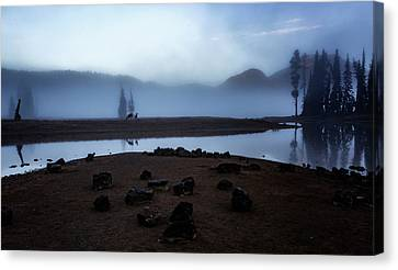 Deer In The Mist Canvas Print by Cat Connor