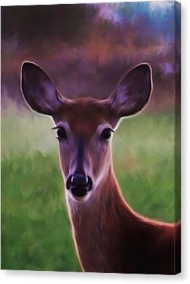 Deer Portrait Canvas Print by Barbara St Jean