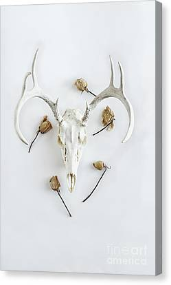 Canvas Print featuring the photograph Deer Skull With Antlers And Roses by Stephanie Frey