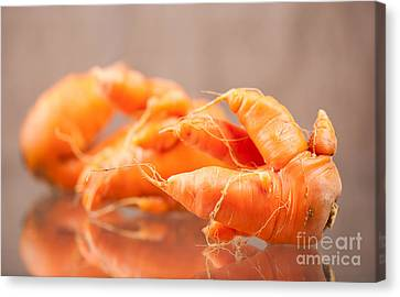 Deformed Carrot Roots With Forks Lying On Glass  Canvas Print by Arletta Cwalina