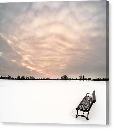 Canvas Print featuring the photograph Delaware Park Winter Solace by Chris Bordeleau