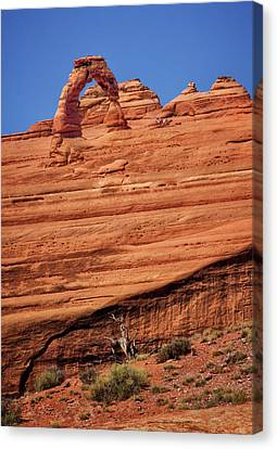 Delicate Arch From Afar Canvas Print