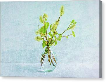 Delicate Spring Bouquet  Canvas Print by Marfffa Art
