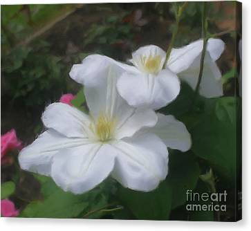 Canvas Print featuring the painting Delicate White Clematis Pair by Smilin Eyes  Treasures