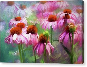 Delightful Coneflowers Canvas Print by Diane Schuster