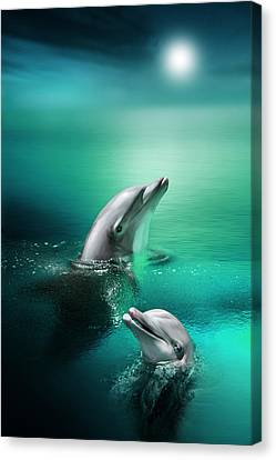 Delightful Dolphins Canvas Print by Julie L Hoddinott