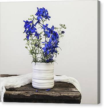 Canvas Print featuring the photograph Delphinium Blue by Kim Hojnacki
