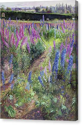 Delphiniums And Hoers Canvas Print
