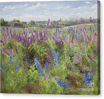 Foxglove Flowers Canvas Print - Delphiniums And Poppies by Timothy Easton