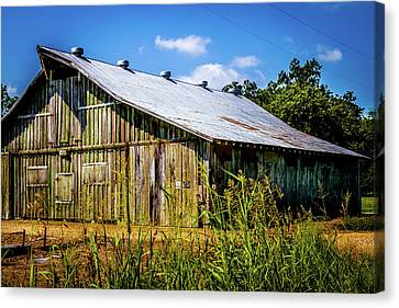 Delta Barn - Farm Landscape Canvas Print by Barry Jones