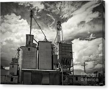 Old Feed Mills Canvas Print - Delta Colorado Grain Elevator by Janice Rae Pariza