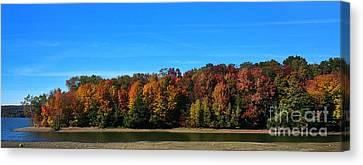 Delta Lake State Park Foliage Canvas Print by Diane E Berry