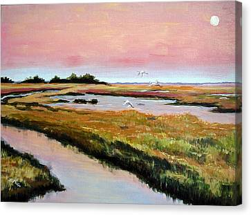 Delta Sunrise Canvas Print