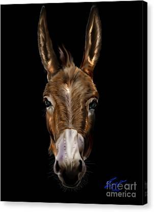 Dem-donkey Canvas Print by Reggie Duffie