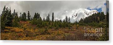 Mt. Rainier - Head In The Clouds Canvas Print by Chuck Flewelling