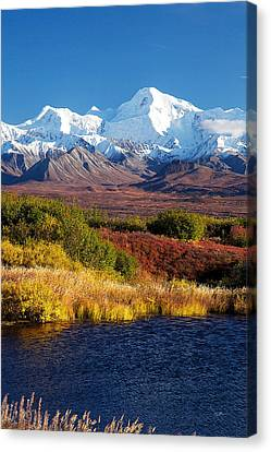 Denali Autumn Canvas Print by Ed Boudreau