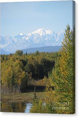 Denali In The Distance Canvas Print