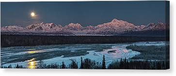 Denali Morning Blue Canvas Print by Ed Boudreau