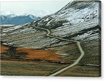 Denali Road 3 Canvas Print