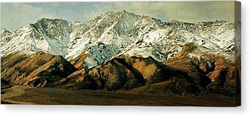 Denali Road 8 Canvas Print