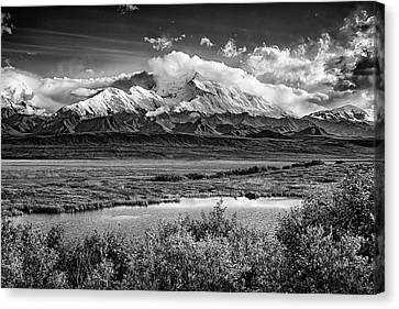 Denali, The High One In Black And White Canvas Print